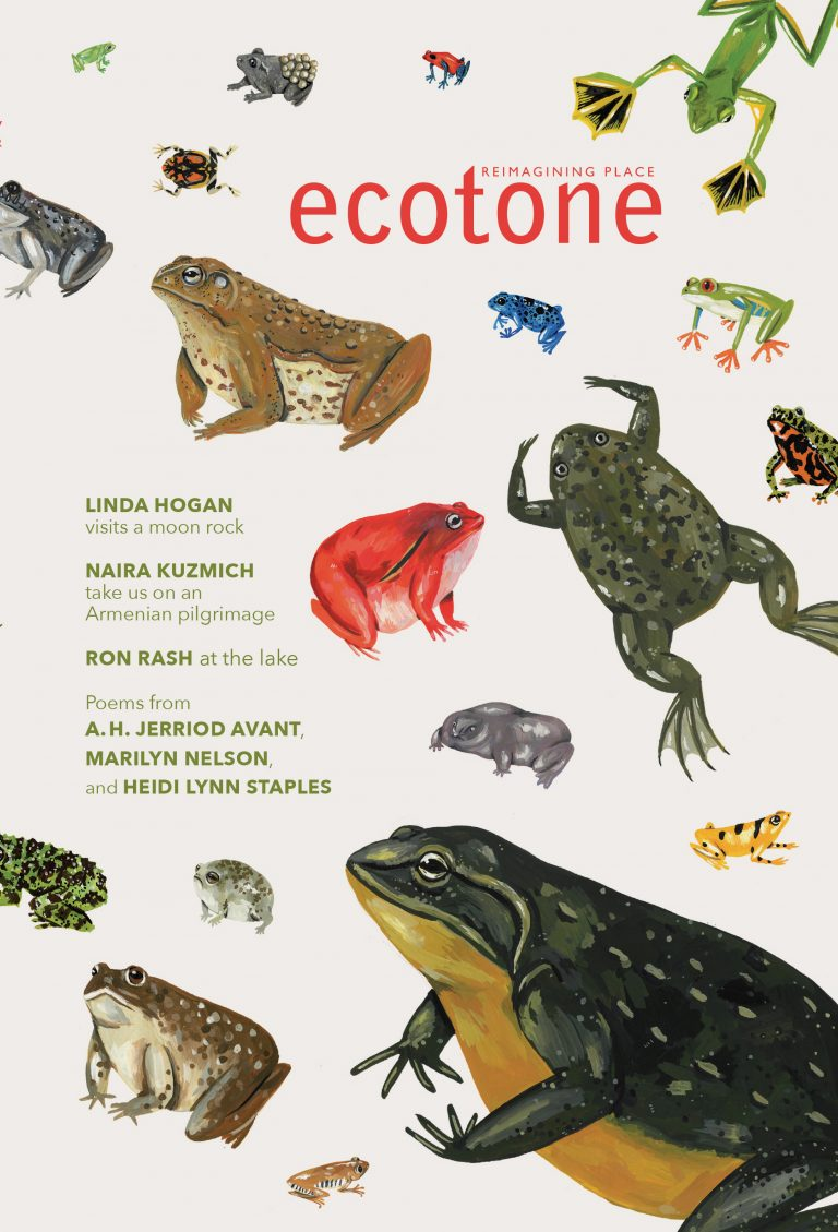 Ecotone-23-Cover-Online-768x1129.jpg